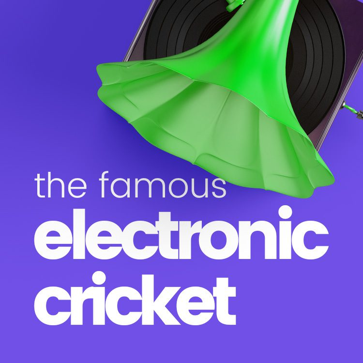 Electronic Cricket